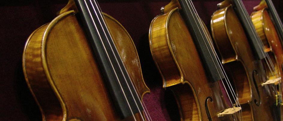 violinsfeature