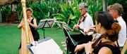 lawnmusicfeature