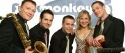 Funk Monkeys