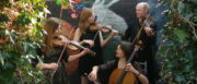 Bristol Ceilidh Quartet: Wedding Barn Dance and Ceilidh Band