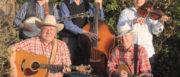 Kent Bluegrass Band